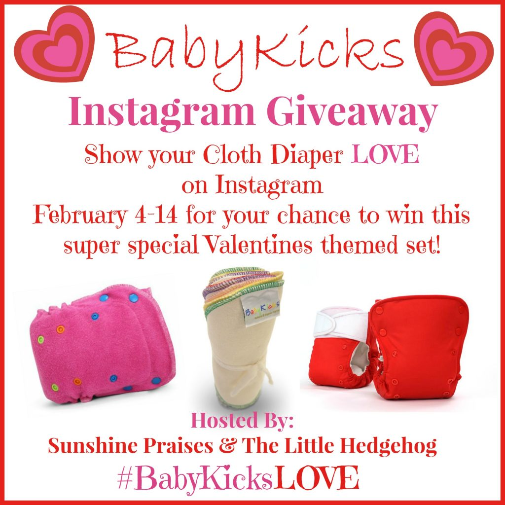 BabyKicks Cloth Diaper Giveaway