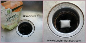 Praise & Giveaway: Nontoxic Cleaning Solutions for Your Home #GrabGreen #MomsMeet